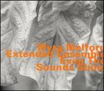 Even the Sounds Shine - Myra Melford Extended Ensemble