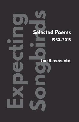 Expecting Songbirds - Benevento, Joe