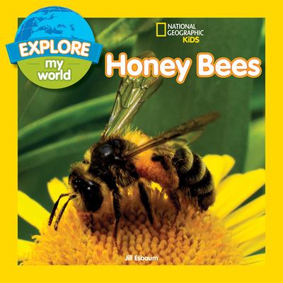Explore My World: Honey Bees - Esbaum, Jill