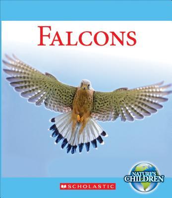 Falcons - Marsico, Katie