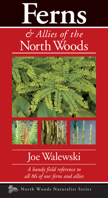 Ferns & Allies of the North Woods: A Handy Field Reference to All 86 of Our Ferns and Allies - Walewski, Joe