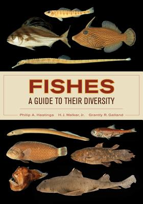 Fishes: A Guide to Their Diversity - Hastings, Philip A., and Walker, Harold Jack, Jr., and Galland, Grantly Robert