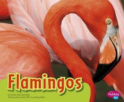 Flamingos - McCarthy, Cecilia Pinto