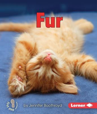 Fur - Boothroyd, Jennifer