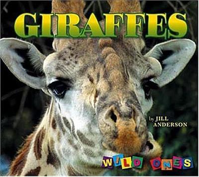 Giraffes - Anderson, Jill