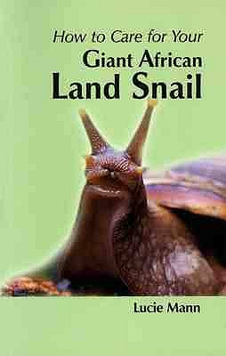 How to Care for Your Giant African Land Snail - Mann, Lucie
