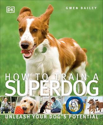 How to Train a Superdog - DK