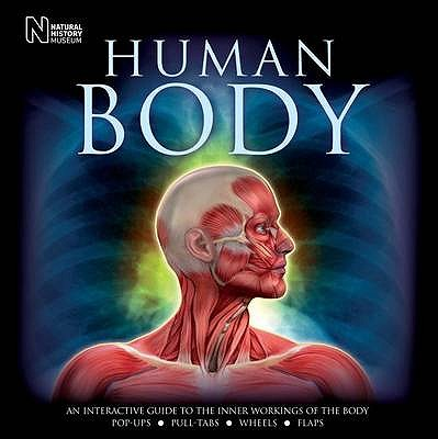 Human Body: An Interactive Guide to the Inner Workings of the Body - Parker, Steve