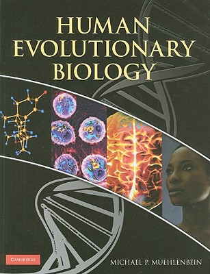 Human Evolutionary Biology - Muehlenbein, Michael P (Editor)