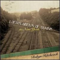 I Often Dream of Trains in New York - Robyn Hitchcock