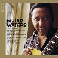 Icon - Muddy Waters