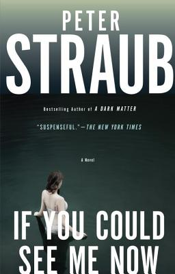 If You Could See Me Now - Straub, Peter