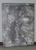 Jasper Johns: Drawings