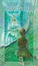 Tarot Der Geisterwelten: 78 Tarotkarten Von Bepi Vigna (Autor), Roberto Deangelis (Autor)