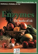 Enzymes: The Sparks of Life