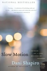 Slow Motion: a Memoir of a Life Rescued By Tragedy (P.S. )
