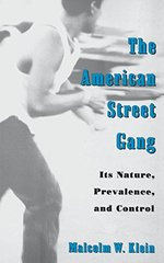 The American Street Gang: Its Nature, Prevalence, and Control (Studies in Crime and Public Policy)