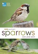 Rspb Spotlight Sparrows