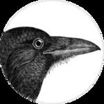Common Crow Books