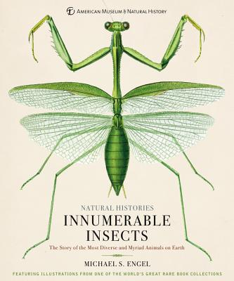 Innumerable Insects: The Story of the Most Diverse and Myriad Animals on Earth - Engel, Michael S, and Baione, Tom (Foreword by)