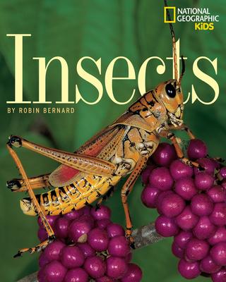 Insects - Bernard, Robin