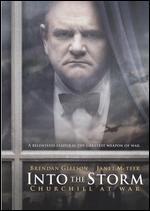 Into the Storm - Thaddeus O'Sullivan