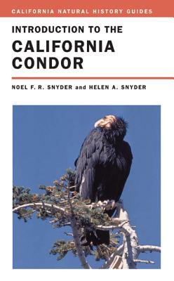 Introduction to the California Condor - Snyder, Noel, and Snyder, Helen, Dr.