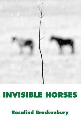 Invisible Horses - Brackenbury, Rosalind