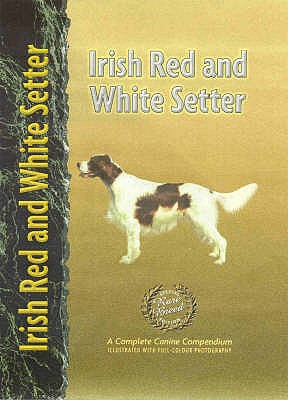Irish Red and White Setter - Bauer, Nona Kilgore