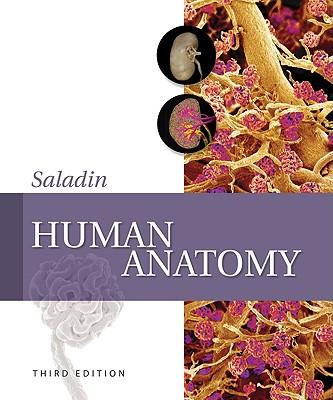 Human Anatomy - Saladin, Kenneth S