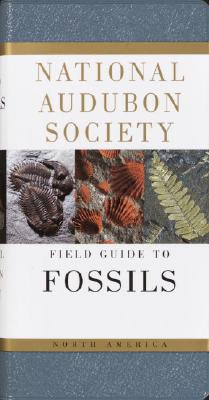 National Audubon Society Field Guide to Fossils - Thompson, Ida, and Dickinson, Townsend P (Photographer), and Nehring, Carol