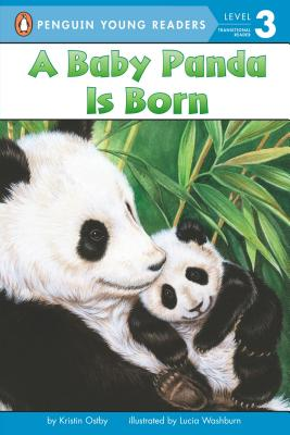 A Baby Panda Is Born - Ostby, Kristin