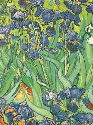 Van Gogh Notebook: 16 Art Stickers - Van Gogh, Vincent