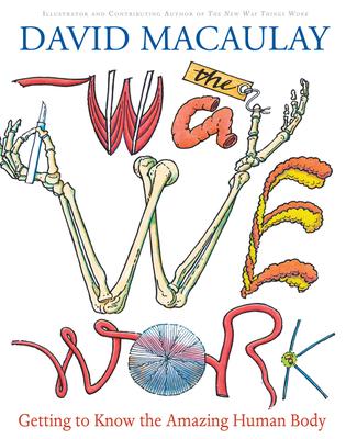 The Way We Work: Getting to Know the Amazing Human Body - Macaulay, David, and Walker, Richard