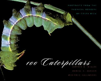 100 Caterpillars: Portraits from the Tropical Forests of Costa Rica -