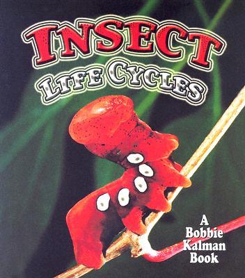 Insect Life Cycles - Aloian, Molly, and Kalman, Bobbie