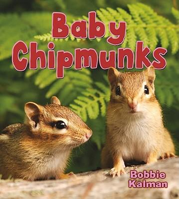Baby Chipmunks - Kalman, Bobbie