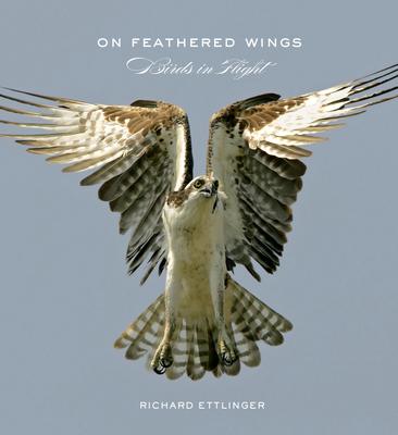 On Feathered Wings: Birds in Flight - Ettlinger, Richard, and Hemmings, David G (Photographer), and Hui, K K (Photographer)
