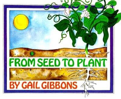 From Seed to Plant - Gibbons, Gail