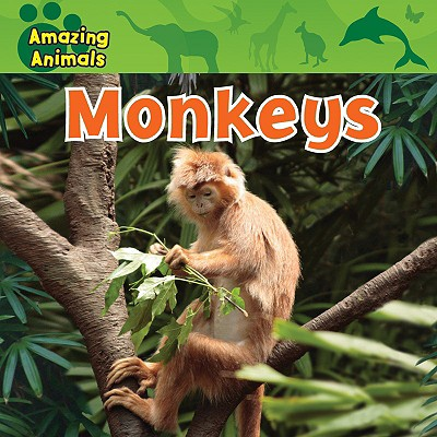 Monkeys - Wilsdon, Christina