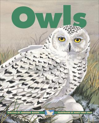 Owls - Mason, Adrienne