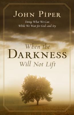 When the Darkness Will Not Lift: Doing What We Can While We Wait for God - And Joy - Piper, John, and Shepherd, Wayne (Read by)