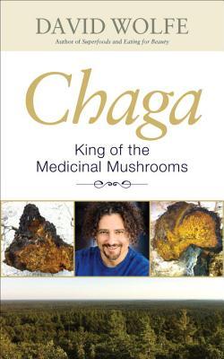 Chaga: King of the Medicinal Mushrooms - Wolfe, David