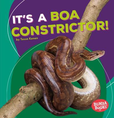 It's a Boa Constrictor! - Kenan, Tessa