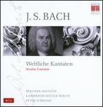 J.S. Bach: Weltliche Kantaten [Box Set]