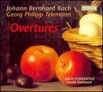 Johann Bernhard Bach: Overtures; Telemann: Overtures