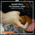 Joseph Marx: Trio-Phantasie; Wildgans-Lieder