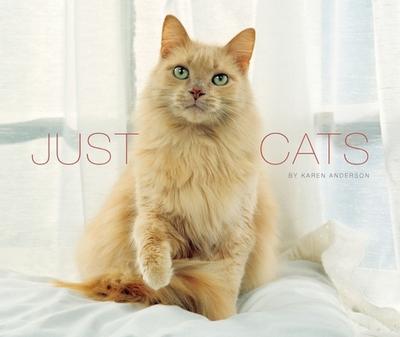 Just Cats - Willow Creek Press