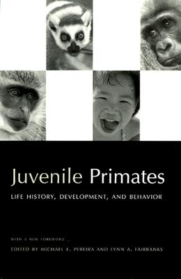 Juvenile Primates: Life History, Development, and Behavior - Pereira, Michael E (Editor)