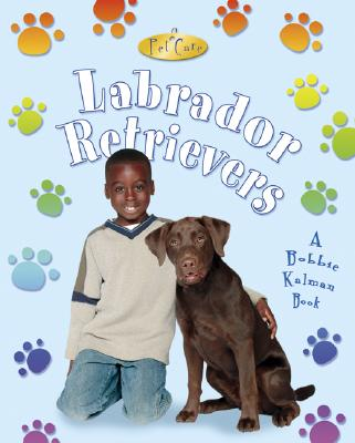 Labrador Retrievers - MacAulay, Kelley, and Kalman, Bobbie